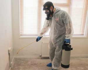 pest_control_liverpool_services